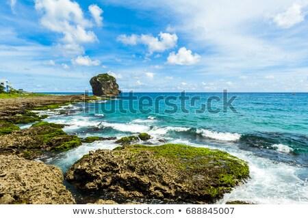 Sahil okyanus Tayvan güzel kaya güney Stok fotoğraf © tang90246