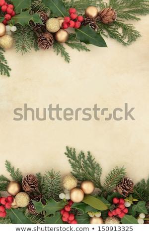 Régi pergamen borostyán keretek kép illusztráció levelek Stock fotó © Irisangel
