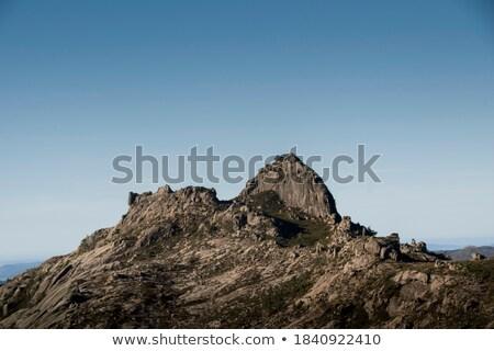 montana · cresta · nieve · invierno · azul · amanecer - foto stock © all32