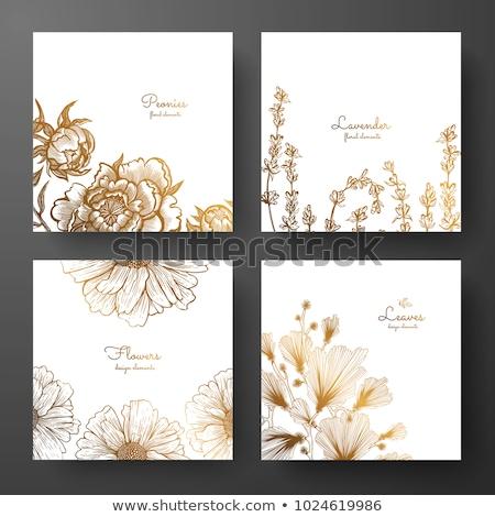 wedding invitation lavender daisies stock photo © irisangel