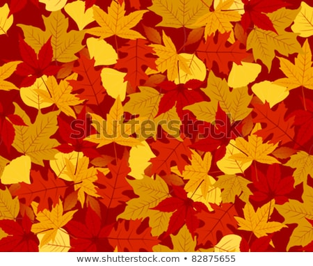 autumn leaves seamless brushes set stock photo © voysla