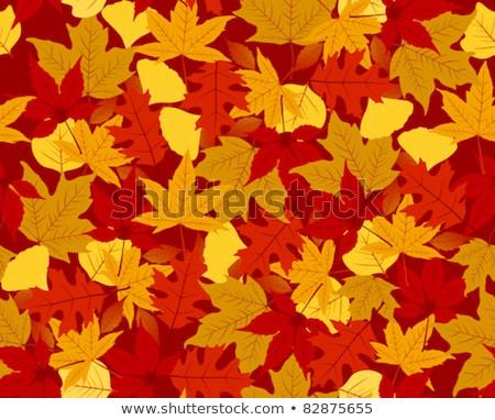 Autumn Leaves Seamless Brushes Set Stock photo © Voysla