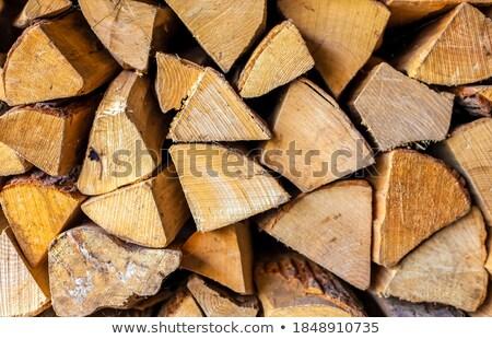 Bosques primer plano corte madera Foto stock © exile7