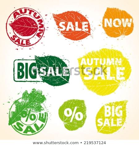 set with autumn sale tags eps 10 stock photo © beholdereye