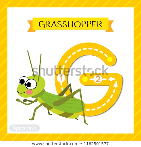 Flashcard letter G is for green Stock photo © bluering