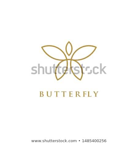 Mariposa logo establecer negro colorido ilustración Foto stock © derocz
