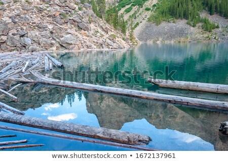 drift wood cross lake stock photo © rghenry