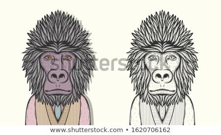 Gorilla faccia felice illustrazione sfondo arte tropicali Foto d'archivio © bluering