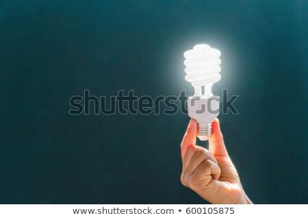 close up of hand holding energy saving lightbulb Stock photo © dolgachov
