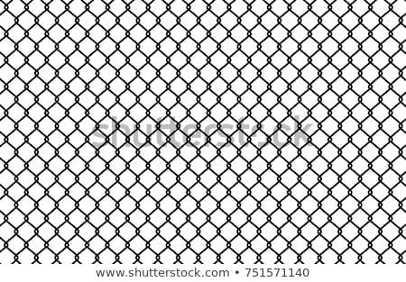 black wire mesh Stock photo © SArts