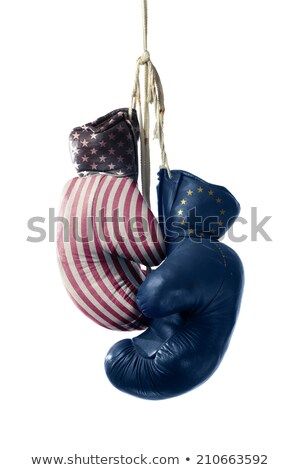 a boxing match between the usa and germany stock photo © zerbor