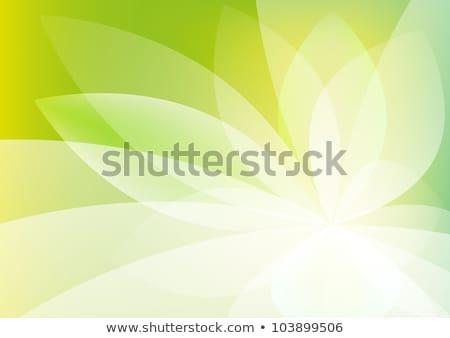 brillante · colorido · moderna · jugoso · verde · amarillo - foto stock © cosveta