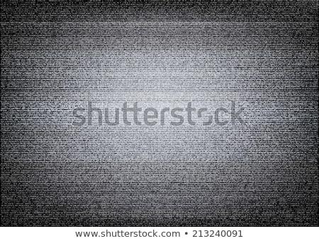 ベクトル テレビ ノイズ 放送 黒白 抽象的な ストックフォト © TRIKONA