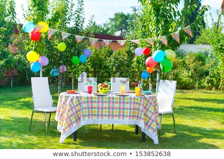 birthday party table setting with food stock photo © monkey_business