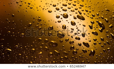 water droplets on black-and-yellow plastic Stock photo © OleksandrO