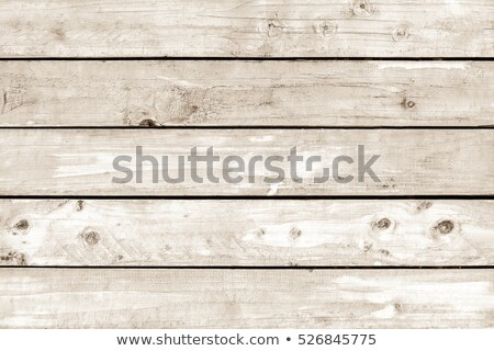 houten · verweerde · oppervlak · gedekt - stockfoto © taviphoto