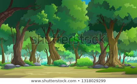 vector forest background Stock photo © freesoulproduction
