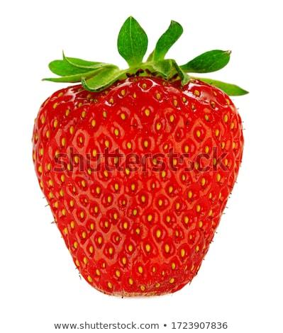 Beautiful ripe and fesh strawberries. stock photo © lithian