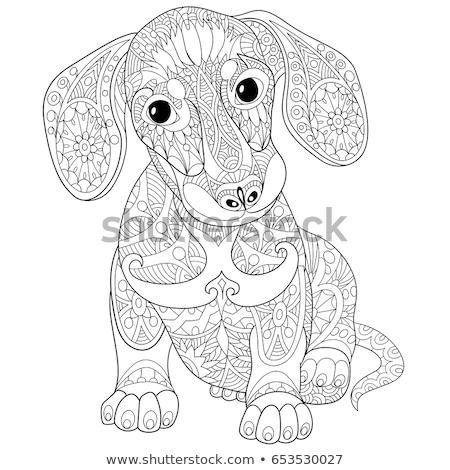 Estilizado cão decorativo camisas projeto Foto stock © Natalia_1947