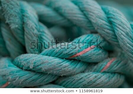Kötél makró tanulás új fehér biztonság Stock fotó © klikk