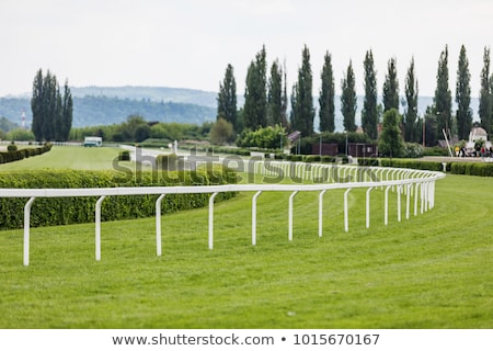 start on race course Stock photo © ssuaphoto