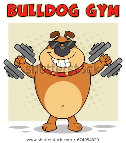 smiling brown bulldog cartoon mascot character with sunglasses working out with dumbbells stock photo © hittoon
