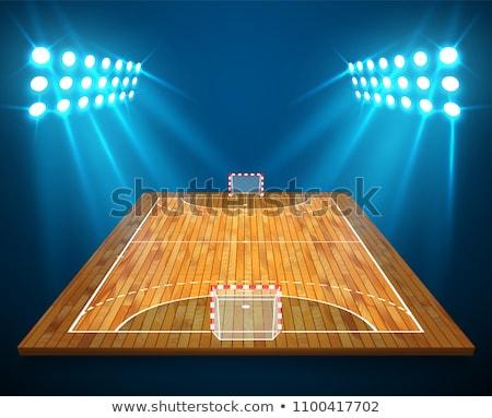 ハンドボール · フィールド · 詳しい · 実例 · アイソメトリック · 観点 - ストックフォト © olehsvetiukha