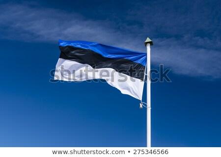 フラグ エストニア 青空 ストックフォト © sarahdoow