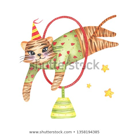 A Tiger Circus Show on White Background Stock photo © bluering