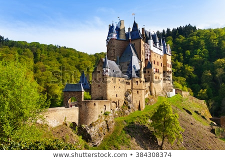 Fairytale towers of a stone castle with a gate and a bridge Stock photo © bedlovskaya