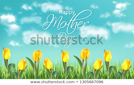 Mother day yellow tulip flowers field Vector realistic banner templates. Spring summer cards Stock photo © frimufilms