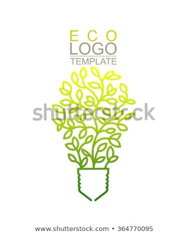 Ampul grafik tasarım şablon vektör yalıtılmış örnek Stok fotoğraf © haris99
