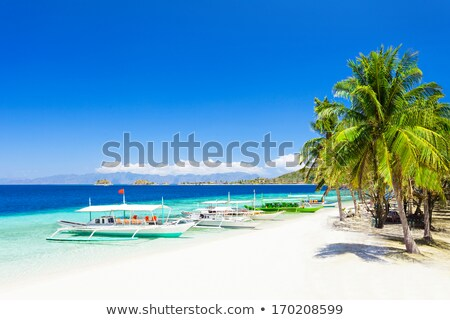 Filipino boat in the sea near the beauty beach at Boracay island Stock photo © galitskaya