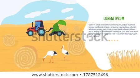 Agrícola maquinaria icono Cartoon vector banner Foto stock © robuart