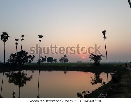 красивой закат синий морем природы пейзаж Сток-фото © vapi