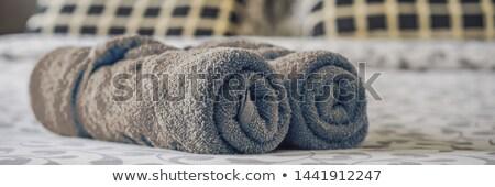 пушистый кровать отель баннер Сток-фото © galitskaya