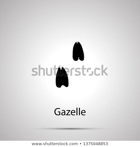 Gazelle étapes simple noir silhouette Photo stock © evgeny89