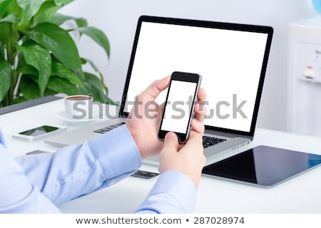 businessman with mobile and portfolio Stock photo © yupiramos