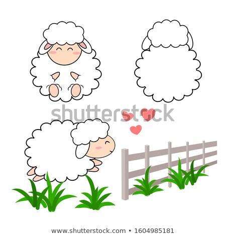 Cute moutons prairie permanent sauvage fleurs Photo stock © smithore