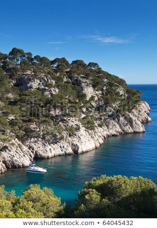 sahil · güney · Fransa · ağaç · doğa · manzara - stok fotoğraf © lightpoet