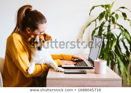 Woman smiling with dog and laptop stock photo © photography33