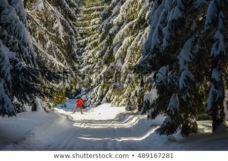 человека · лыжах · только · снега · горные · льда - Сток-фото © photography33