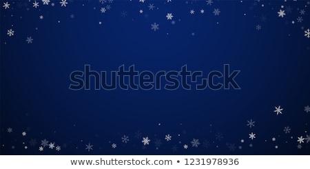 Briljant Blauw christmas boom sneeuw ijs Stockfoto © ozaiachin