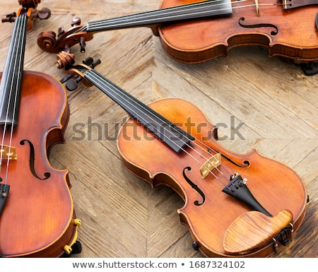 Cello Instrument Stock photo © cteconsulting