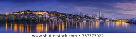 Belgrade at night Stock photo © badmanproduction