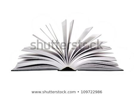 Grande livro branco escolas educação aprendizagem Foto stock © Gloszilla