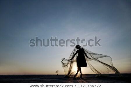 Taniec dachu młoda kobieta sportu sukienka zumba Zdjęcia stock © val_th