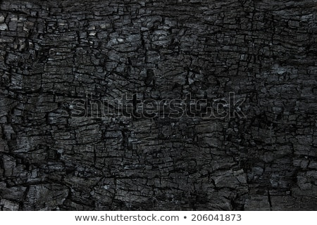 Seamlessly black coal background. Stock photo © Leonardi