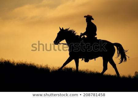 Teksas kovboy Eski kağıt elemanları boyama siluet Stok fotoğraf © GeraKTV