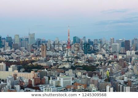 Tokio toren schemering skyline park Japan Stockfoto © vichie81